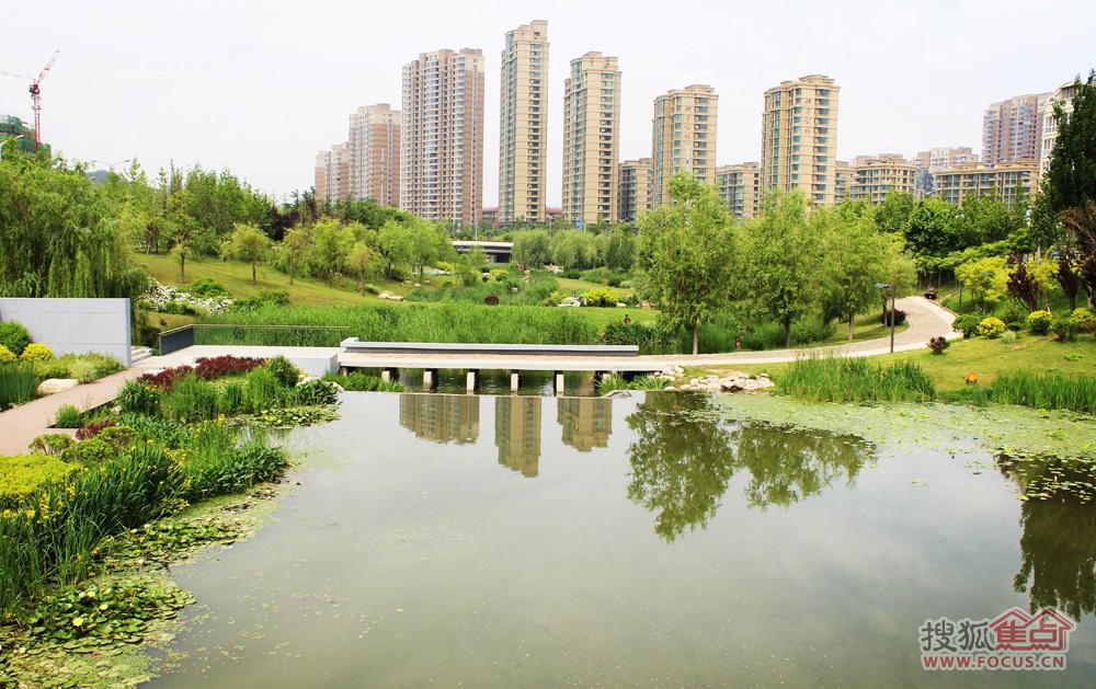 李村河风景2-青岛搜狐焦点网