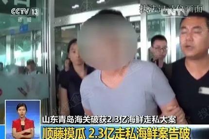 3亿   6月24日,在蓬莱国际机场,王某一下飞机就被蹲守的缉私警察抓获
