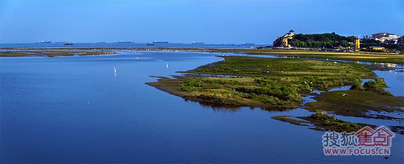 最新拍摄北戴河鸽子窝湿地风景