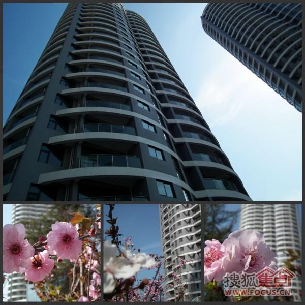 蓝天·海景国际实景; 蓝天海景国际二期珍藏海景现房 双重折扣发售