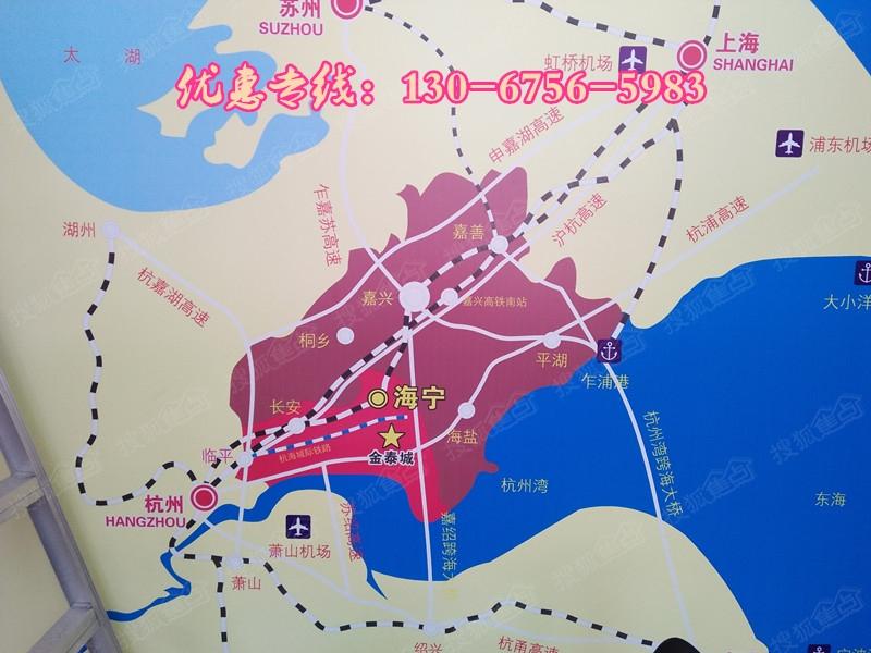 上海地铁9号线延伸段规划图