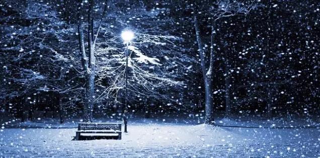 12.在夜晚拍摄下雪的路灯