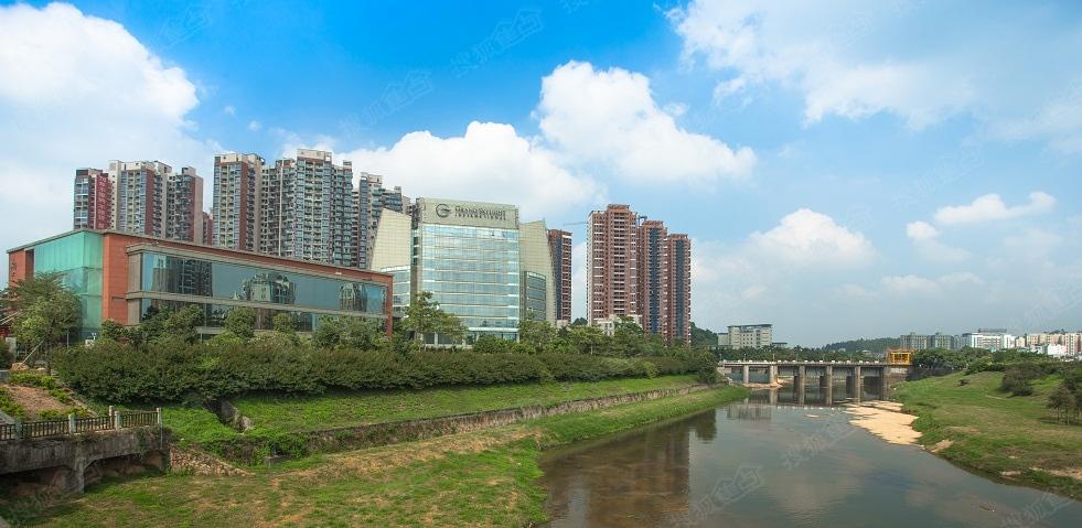 九龙山风景区图片