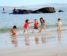 7月29日滨海度假看房召集 完美周末享精美午餐