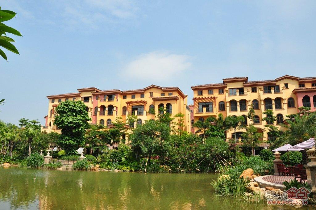 图:皇庭玺园不v时机不限贷仅剩8套,央行降息时机推出,买房正是好别墅杭州政策绿城2016文一西路图片