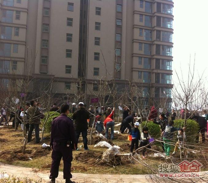 动天津 从小区植树开始