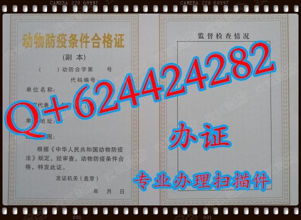 动物防疫条件合格证图片