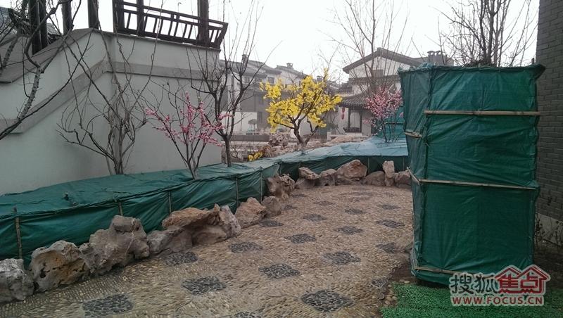 宝安江南城别墅私家庭院实景图 2014 3