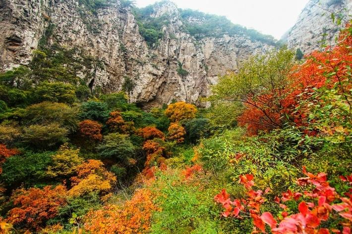 崛围山风景区,位于山西省会太原市西北24公里处,这里自古青松成林,桦