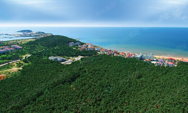 号威海kac俱乐部夜宴活动开启   海信海景壹号南侧被40万亩黑松林环绕图片