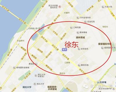 """武汉""""买房痛苦指数""""地图 看看在哪买房最苦逼图片"""