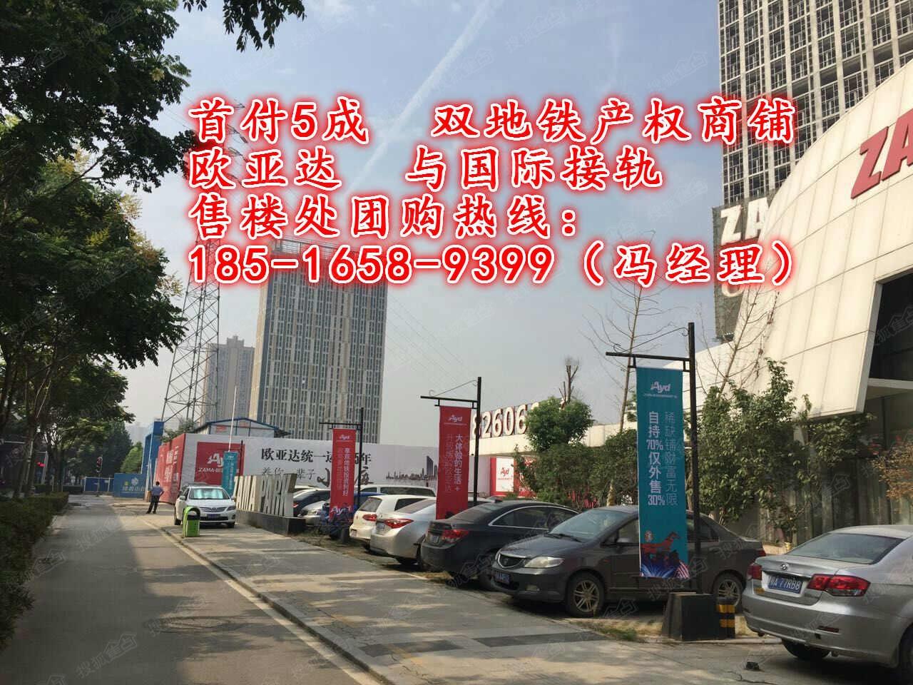 【武汉市中心双地铁商铺出售】zama park欧亚达家居广场图片