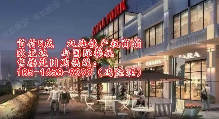 【双地铁产权商铺】zama park欧亚达家居广场-武汉图片