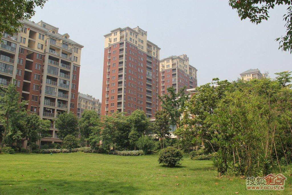 武汉现代森林小镇现代森林小镇实景图5高清大图-搜狐图片