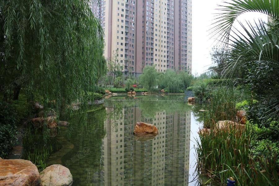 天朗御湖图片