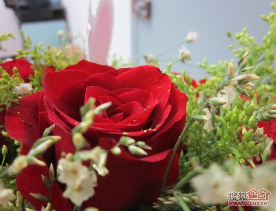 就收到了一束美美的玫瑰花